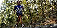 A Merkapt SE csapata a Bécs - Budapest Marathonon